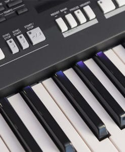 Keyboard CLAVIA NORD LEAD 2 X Abdeckung Dust Cover 10201 Viktory
